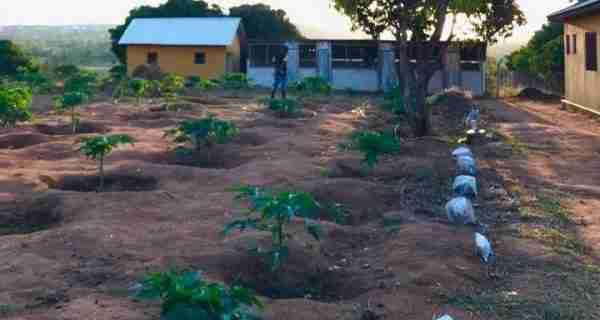 Tanzania Micro-Business Expands