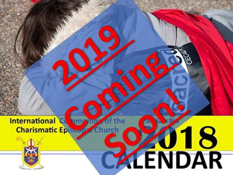 Ready to receive your 2019 ICCEC Calendar Photos 46