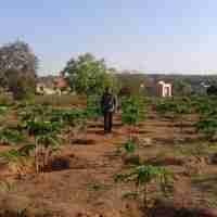 Tanzania Development Project continue to expand