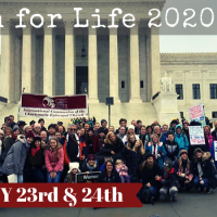 Patriarch's Sanctity of Life Message, 2020