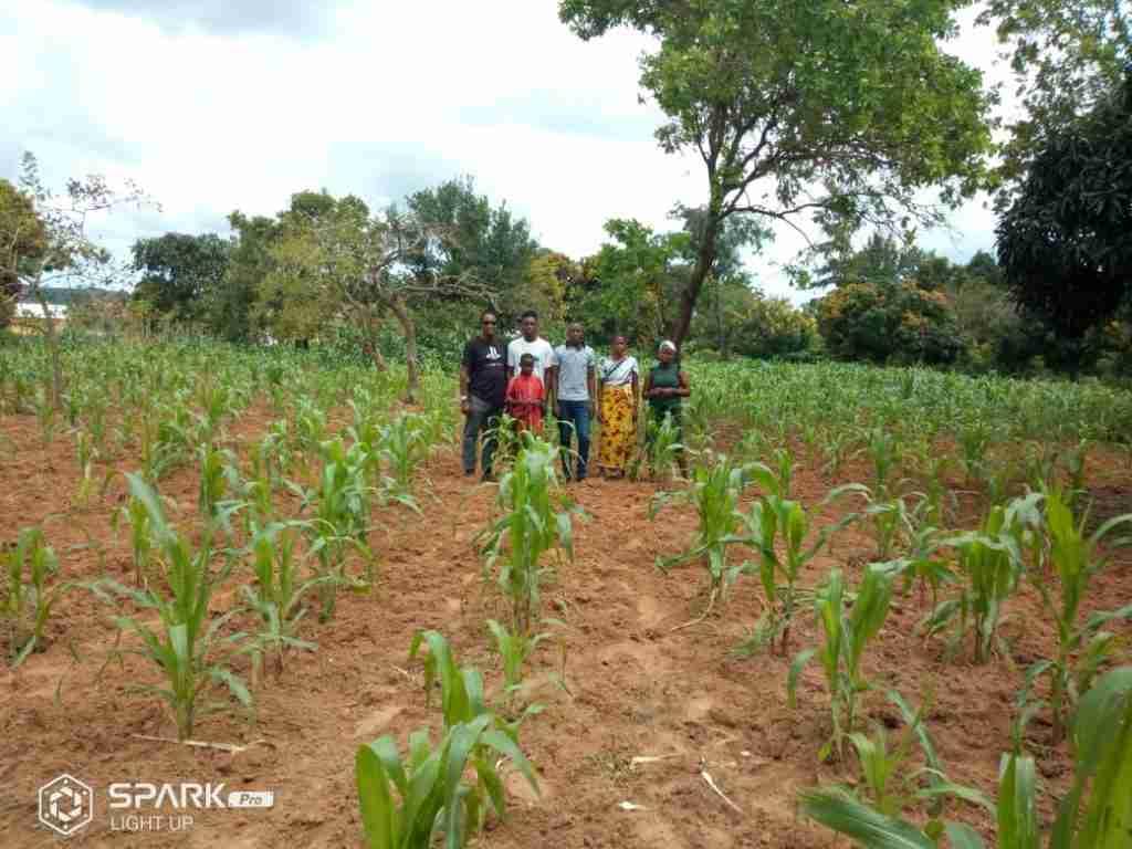 Wonderful Progress in Tanzania 5